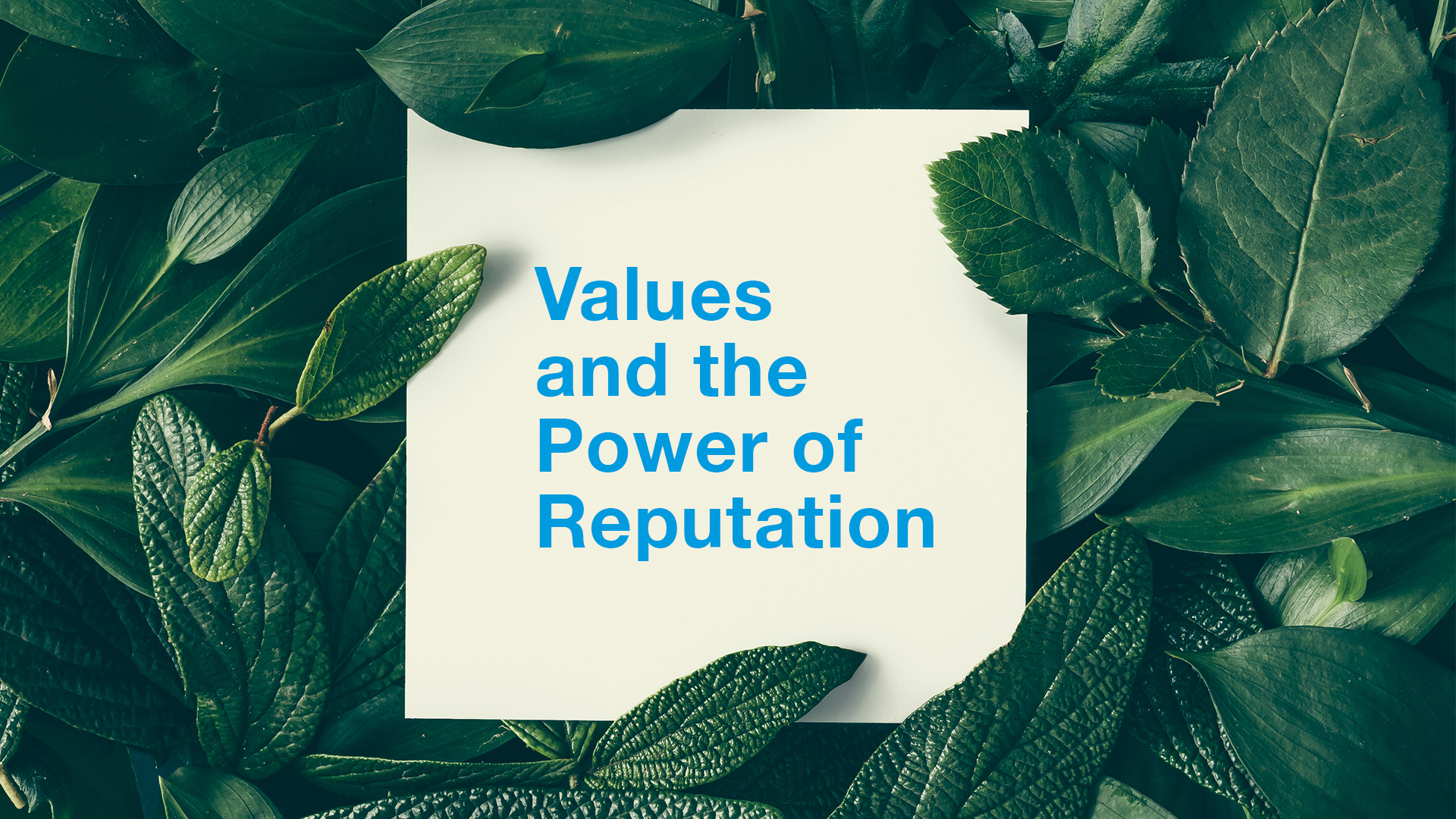 Values and the Power of Reputation thumbnail
